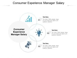 Consumer Experience Manager Salary Ppt Powerpoint Presentation File Shapes Cpb