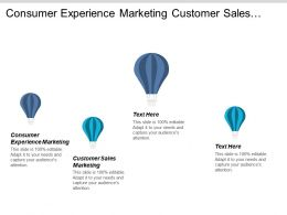 Consumer Experience Marketing Customer Sales Marketing Social Media Monitoring Cpb
