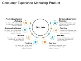 Consumer Experience Marketing Product Development Marketing Business Intelligence Cpb
