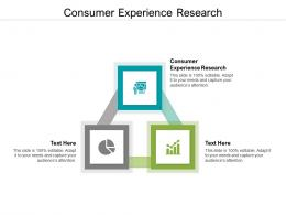 Consumer Experience Research Ppt Powerpoint Presentation Professional Styles Cpb