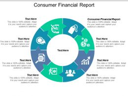 Consumer Financial Report Ppt Powerpoint Presentation File Slides Cpb