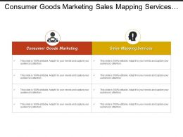 Consumer Goods Marketing Sales Mapping Services Marketing Budget Cpb