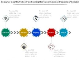 Consumer Insight Activation Flow Showing Relevance Immersion In Sighting And Validation
