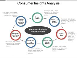 Consumer Insights Action Process