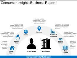 Consumer Insights Business Report