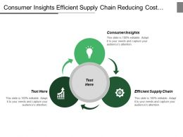 Consumer Insights Efficient Supply Chain Reducing Cost Complexity
