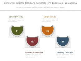 Consumer Insights Solutions Template Ppt Examples Professional