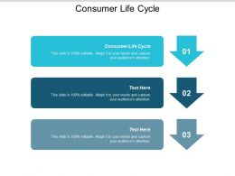 Consumer Life Cycle Ppt Powerpoint Presentation Gallery Slide Portrait Cpb