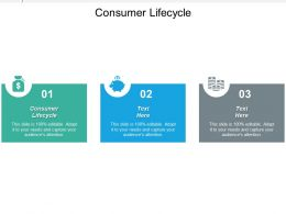 Consumer Lifecycle Ppt Powerpoint Presentation Gallery Graphics Download Cpb