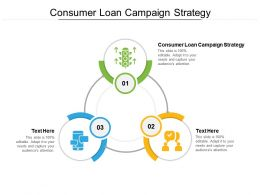 Consumer Loan Campaign Strategy Ppt Powerpoint Infographics Themes Cpb