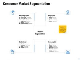 Consumer Market Segmentation Demographic Ppt Powerpoint Presentation Layouts