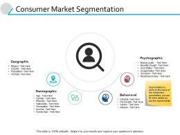 Consumer Market Segmentation Geographic Powerpoint Presentation File Portfolio