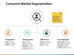 Consumer Market Segmentation Ppt Powerpoint Presentation File Infographics
