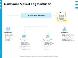 Consumer Market Segmentation Ppt Powerpoint Presentation Layouts Graphics