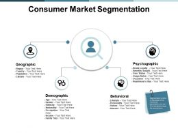 Consumer Market Segmentation Ppt Powerpoint Presentation Show Visual Aids