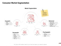 Consumer Market Segmentation Psychographic Ppt Powerpoint Presentation Professional Inspiration