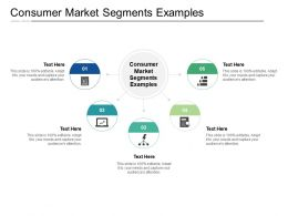 Consumer Market Segments Examples Ppt Powerpoint Presentation Model Background Designs Cpb