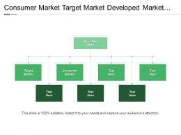 Consumer Market Target Market Developed Market Industrial Market