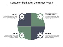 Consumer Marketing Consumer Report Powerpoint Presentation Portfolio Infographics Cpb