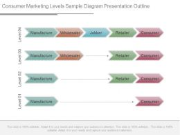 Consumer Marketing Levels Sample Diagram Presentation Outline