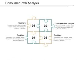 Consumer Path Analysis Ppt Powerpoint Presentation Infographic Template Portrait Cpb