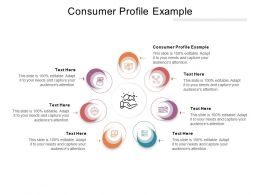 Consumer Profile Example Ppt Powerpoint Presentation Inspiration Elements Cpb