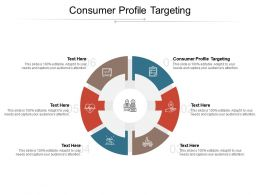Consumer Profile Targeting Ppt Powerpoint Presentation Portfolio Graphics Download Cpb