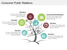 Consumer Public Relations Ppt Powerpoint Presentation File Show Cpb
