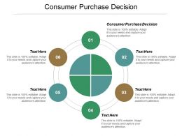 Consumer Purchase Decision Ppt Powerpoint Presentation File Designs Cpb