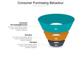 Consumer Purchasing Behaviour Ppt Powerpoint Presentation Gallery Examples Cpb