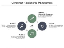 Consumer Relationship Management Ppt Powerpoint Presentation File Guidelines Cpb