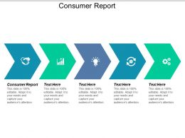 Consumer Report Ppt Powerpoint Presentation Gallery Outline Cpb