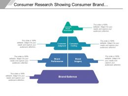 Consumer Research Showing Consumer Brand Performance Judgement