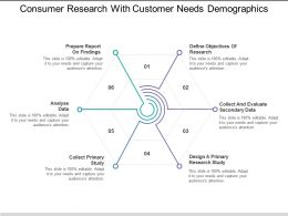 Consumer Research With Customer Needs Demographics