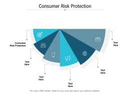 Consumer Risk Protection Ppt Powerpoint Presentation Outline Themes Cpb