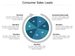 Consumer Sales Leads Ppt Powerpoint Presentation Model Skills Cpb