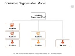 Consumer Segmentation Model Ppt Powerpoint Presentation Infographic Template Background Image Cpb