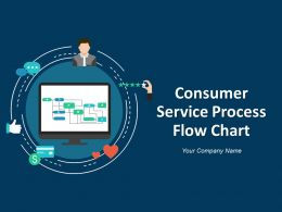 Consumer Service Process Flow Chart Powerpoint Presentation Slides