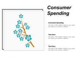 Consumer Spending Ppt Powerpoint Presentation Ideas Demonstration Cpb