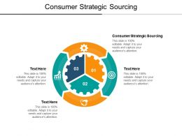 Consumer Strategic Sourcing Ppt Powerpoint Presentation Icon Portfolio Cpb