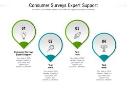 Consumer Surveys Expert Support Ppt Powerpoint Presentation Inspiration Demonstration Cpb