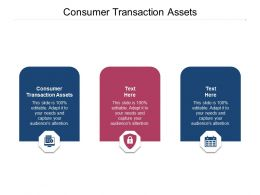 Consumer Transaction Assets Ppt Powerpoint Presentation Professional Example Cpb