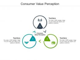 Consumer Value Perception Ppt Powerpoint Presentation Portfolio Summary Cpb