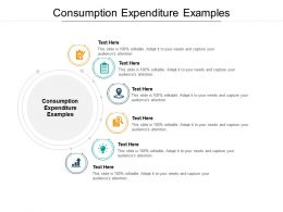 Consumption Expenditure Examples Ppt Powerpoint Presentation Inspiration Show Cpb
