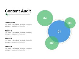 Content Audit Ppt Powerpoint Presentation Gallery Inspiration Cpb