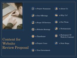 Content For Website Review Proposal Our Offerings Ppt Icon
