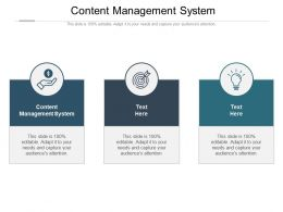 Content Management System Ppt Powerpoint Presentation Show Slide Portrait Cpb