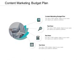 Content Marketing Budget Plan Ppt Powerpoint Presentation Slides Files Cpb