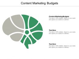 Content Marketing Budgets Ppt Powerpoint Presentation Pictures Maker Cpb