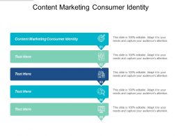 Content Marketing Consumer Identity Ppt Powerpoint Presentation File Example Cpb